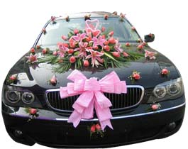 Wedding Car Rental Service Delhi Hire A Luxury Car Cars On Demand